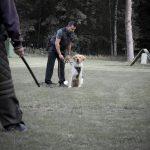 BO bei Schutzdienst