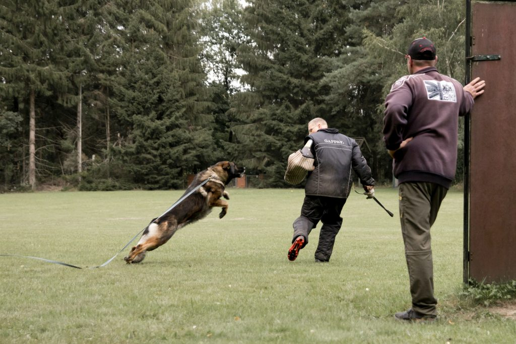 Training Schutzdienst Buchholz